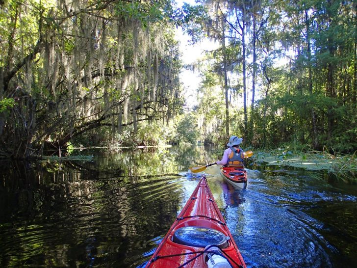 Central Florida Kayaking
