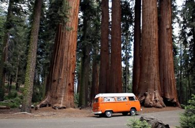 This 1974 Volkswagen Got Restored For A Charming Road Trip