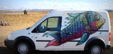You Can Go KúKú In Iceland With These Quirky Campervan Rentals
