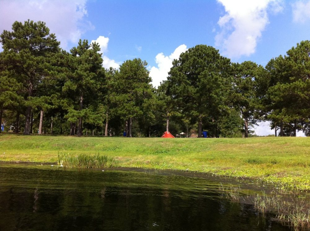 3 Cheap Rv Parks And Campgrounds Near Orlando Florida