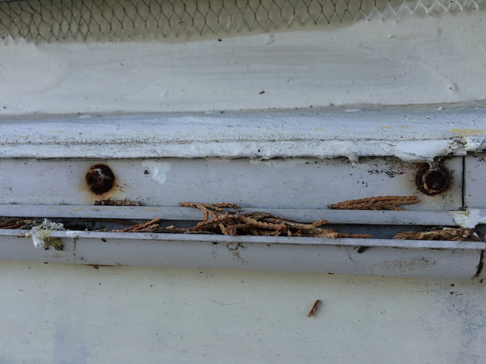 An RV tech can find things like hidden rusted screws under outside trim that indicate water damage to the walls.
