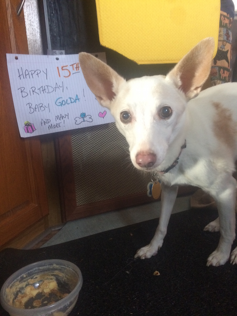 Golda on her 15th birthday on the Washington Coast.