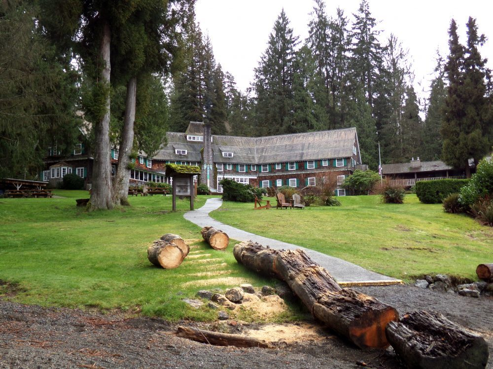Camping And RVing In The Quinault Rainforest