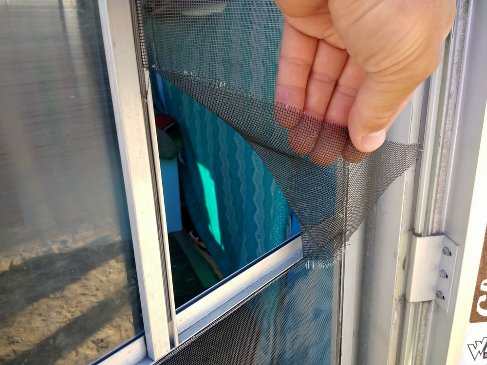 If It Is Possible The Easiest Way To Replace A Window Screen Remove Entire Frame With Damaged As One Whole Piece