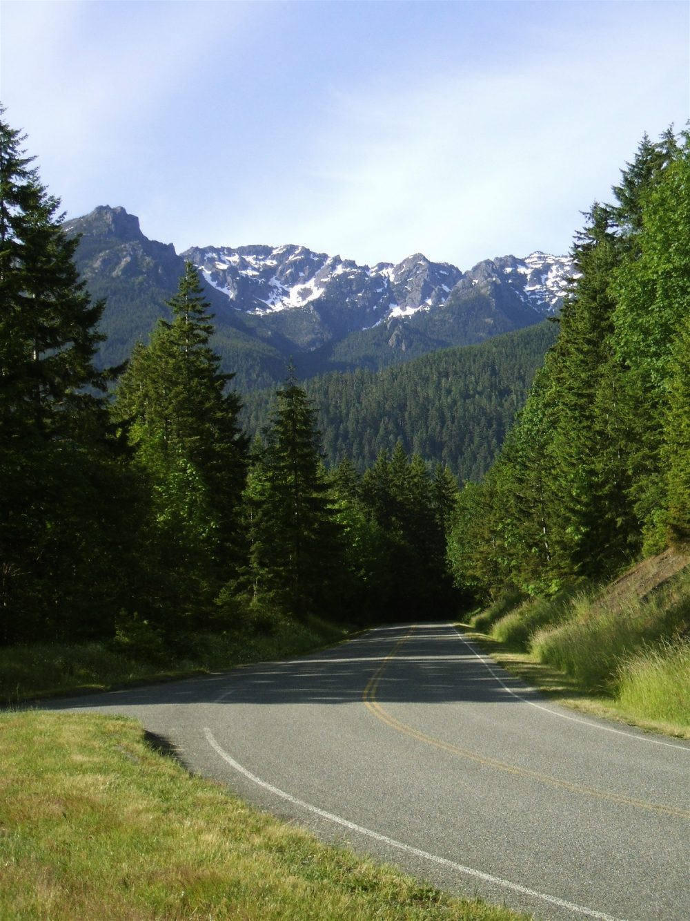 """""""This first major pullout on the Hurricane Ridge road features a view down the mountain of the Strait of Juan de Fuca, Port Angeles, and the features of the northern tip of the Olympic Peninsula. But what caught my eye was the opposite direction from """"the view"""" which offered a beautiful stunning view of the mountain ridges toward which we were climbing."""" - Photo & caption by Glenn Scofield Williams"""