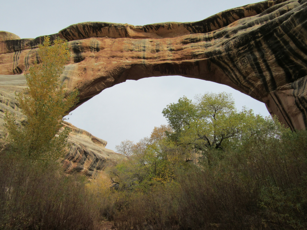natural_bridges_bridge