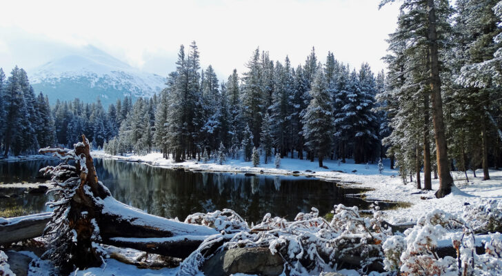 8 Reasons You Should Go Hiking This Winter