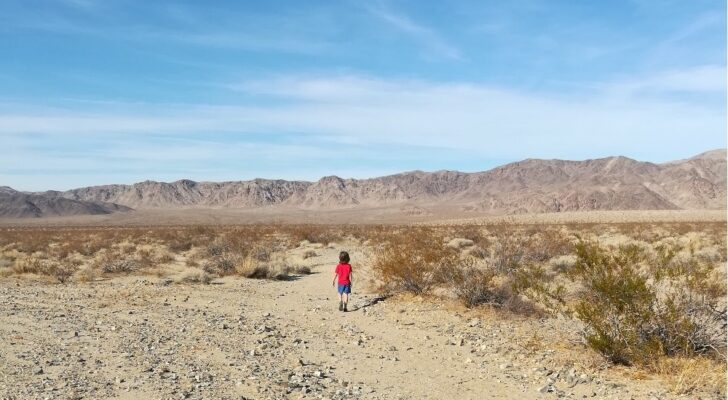 5 Tips For Visiting National Parks With Kids