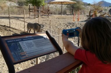 5 Family-Fun Zoos You Need To Visit