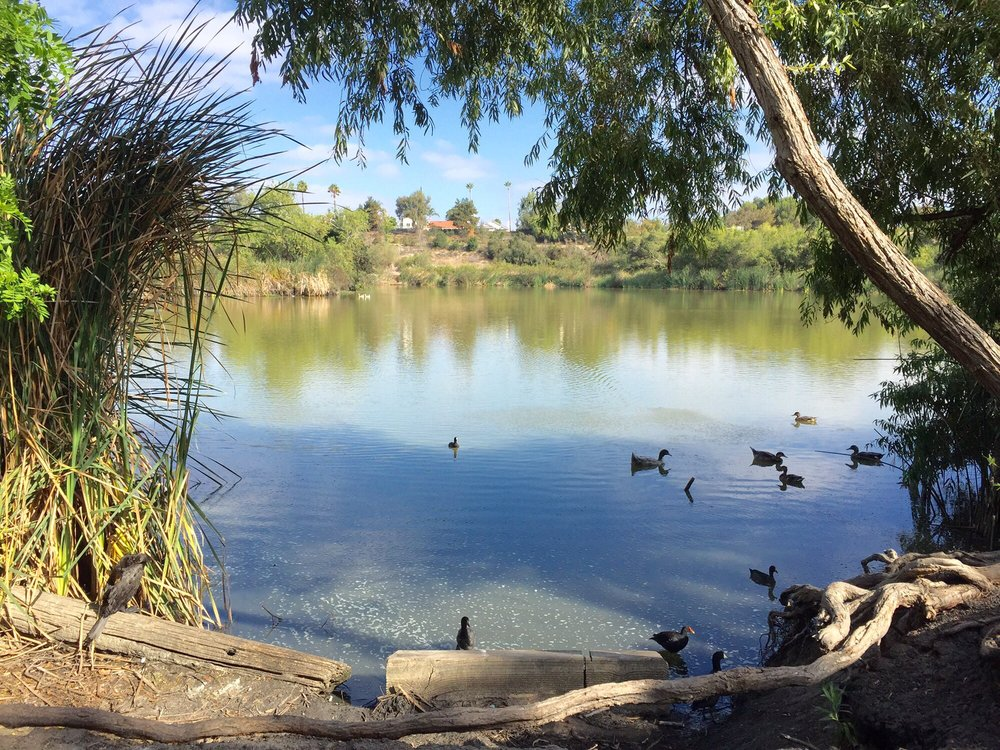 Guajome County Park - Photo via Yelp