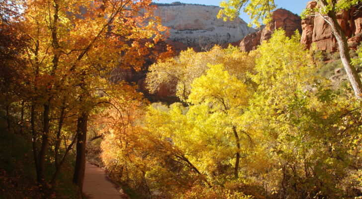 Your Guide To RV Camping During The Fall