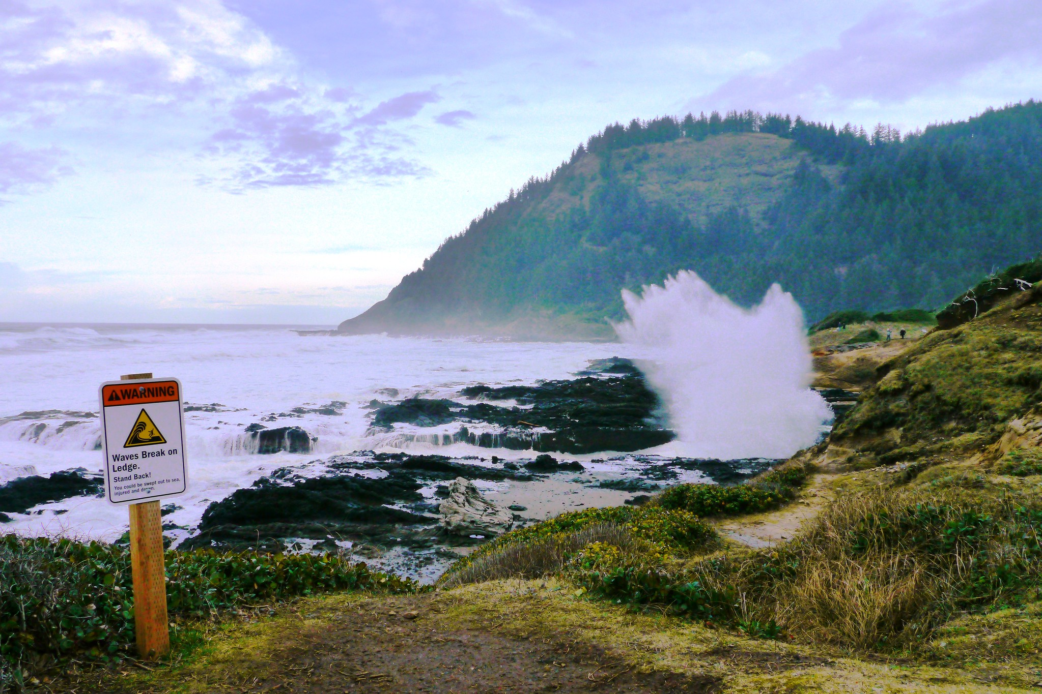 Cape Perpetua Scenic Area. Photo by Rick Obst