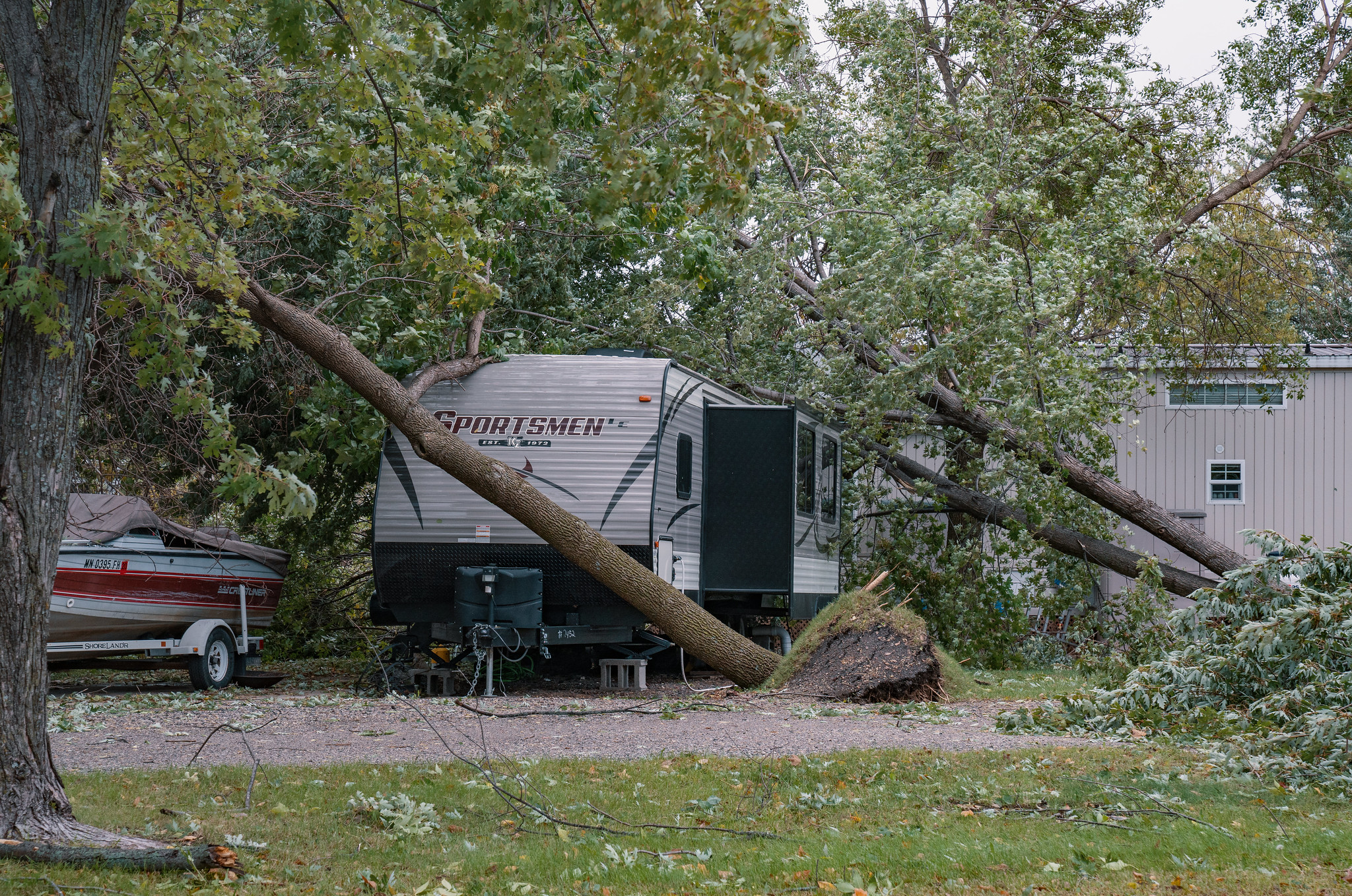 Wind pushes trees over on top of a travel trailer