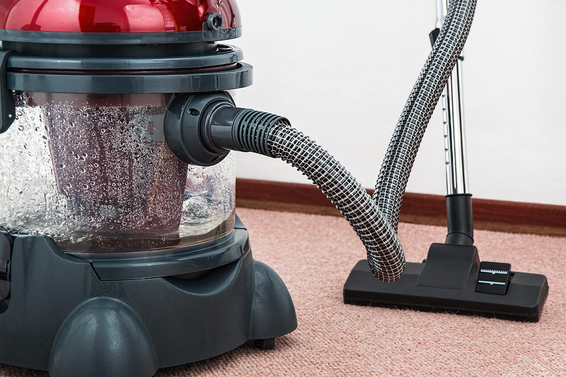 Carpet cleaner and vacuum
