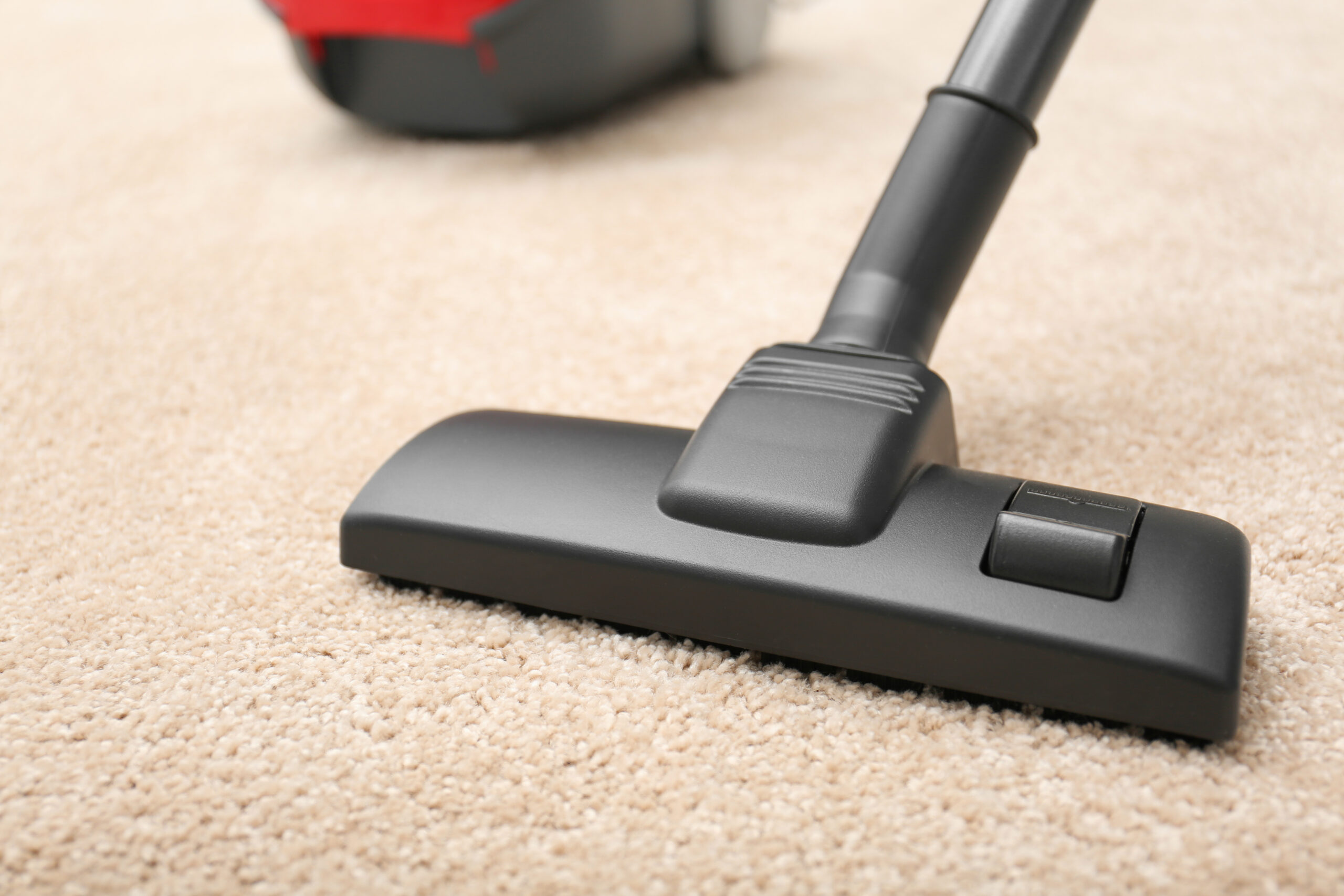 vacuum cleaning carpet with DIY carpet cleaner