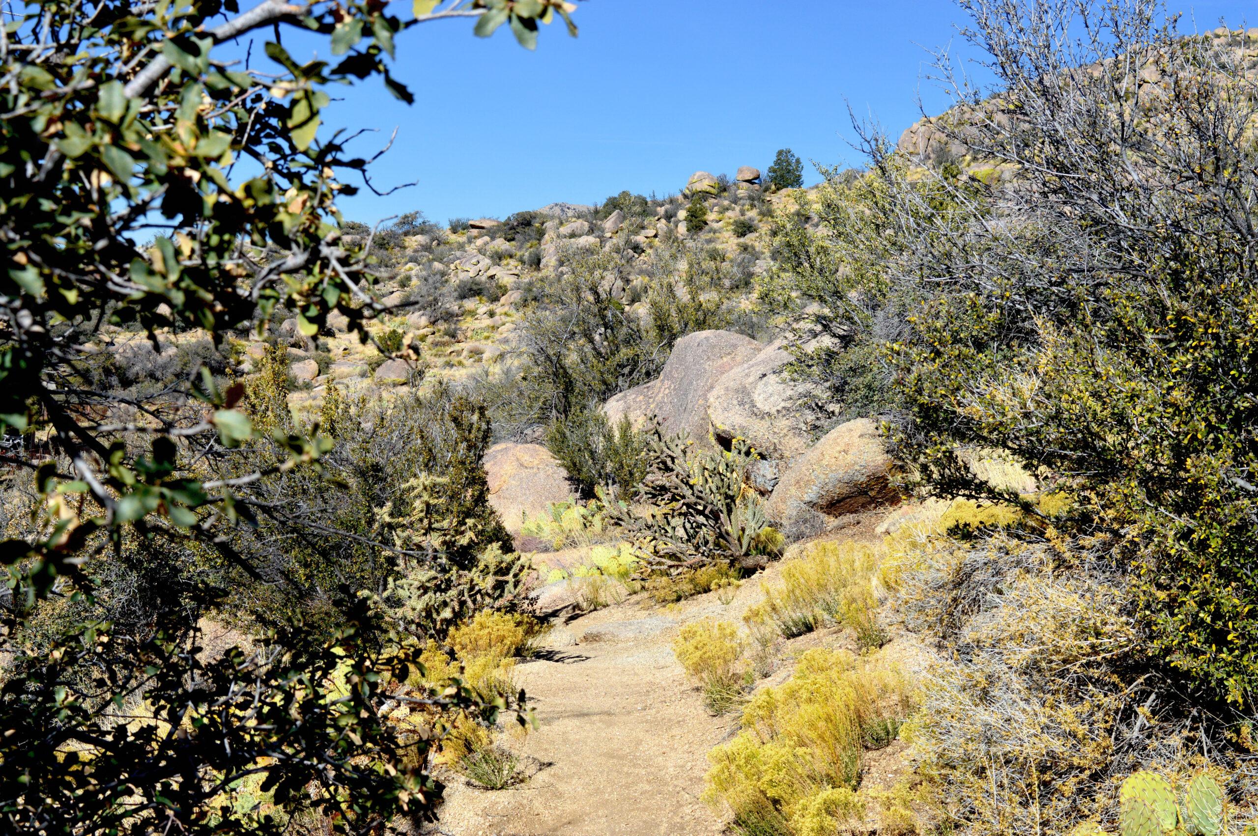 La Luz Trail in New Mexico