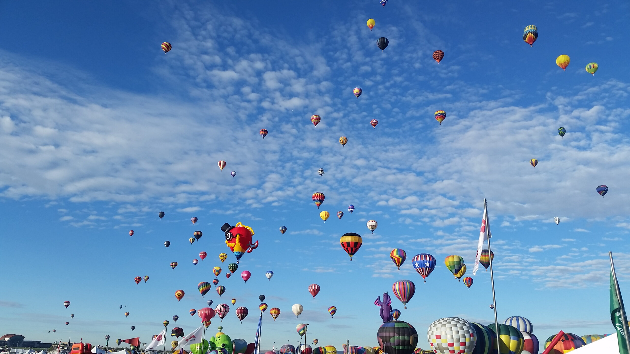 Hot air balloons floating against a blue sky. Photo from the Albuquerque International Balloon Fiesta